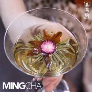 Jasmine Blossoms in Cocktail Glass
