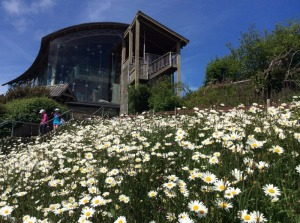 The Wildlife Trusts Welsh Wildlife Centre