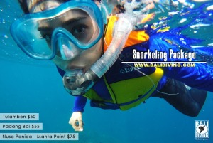 Snorkeling for nonswimmer provided with life jacket
