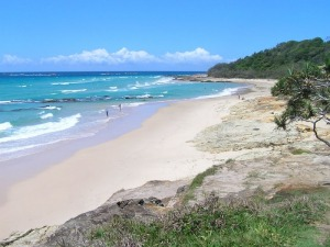 Straddie Kingfisher Tours