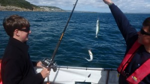 Mackerel fishing