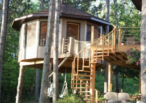 My Lake Home and Tree House