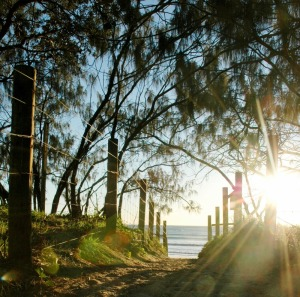 Beach Health Retreat