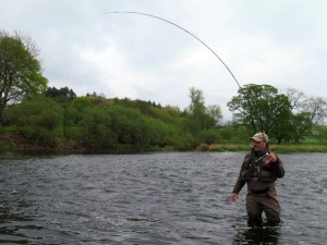 A nice bend in the rod