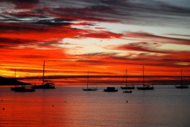 Magnetic Island's BEST Bus Tours
