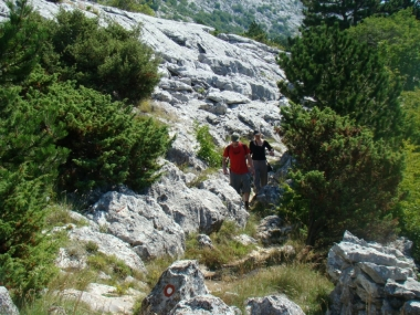 Hiking Tour from Split