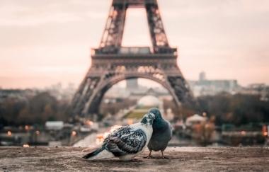 Paris à l'envers
