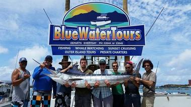Blue Water Tours