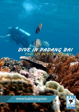 Padang Bai fun diving