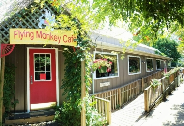 The Flying Monkey Café