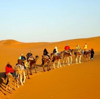 Thrill Of Morocco Tours