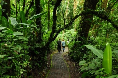 COSTA RICA CLOUD FOREST TOUR