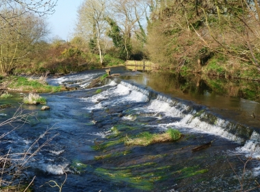 The Culm Valley River and our original sluice system