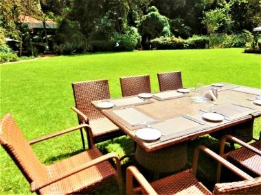 Lush Green Gardens