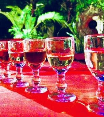 Georges Rum Tasting Experience