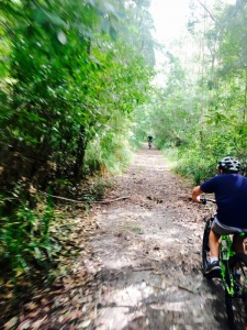 Mountain Bike Tours Byron Bay