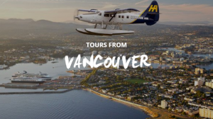 Vancouver whale watching tours